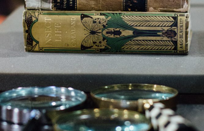 Books with magnifying glasses